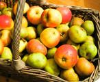 Ein Apfel am Tag hält den Arzt vom Hals